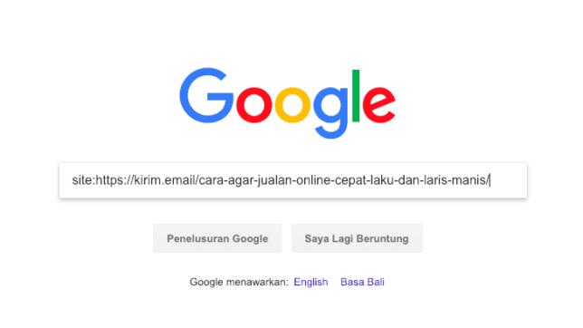 Cara Mengetahui Sebuah Artikel Blog Sudah Terindex Di Google Atau Belum - 1