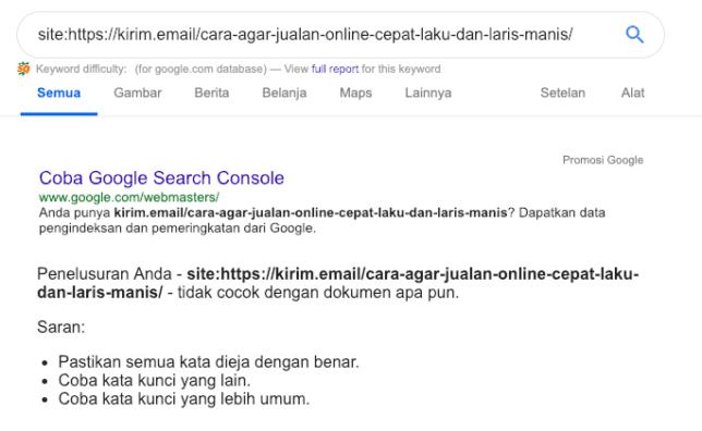 Cara Mengetahui Sebuah Artikel Blog Sudah Terindex Di Google Atau Belum - 2