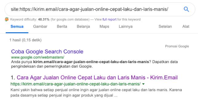 Cara Mengetahui Sebuah Artikel Blog Sudah Terindex Di Google Atau Belum - 3