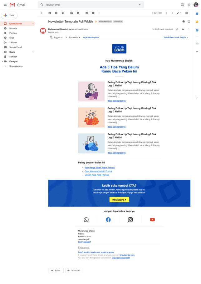 5 Contoh Desain Email Newsletter Template Gratis Untuk Perusahaan - 2