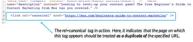 Apa itu Canonical URL dan Fungsinya Untuk Apa? - 1